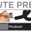 Аэрограф Iwata Custom Micron CM-C Plus 2 4429